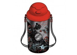 Justice League Water Bottle 500Ml
